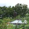 「三鷹の森ジブリ美術館」見学